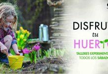 agosto-un-mes-para-cuidar-de-la-naturaleza-en-el-huerto-urbano-de-parque-corredor